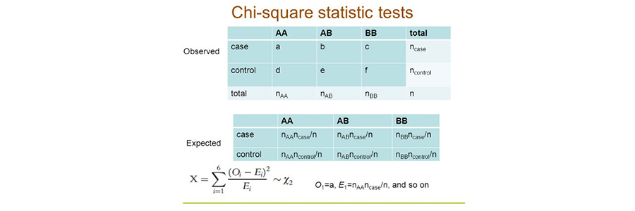 Chi-square Tests